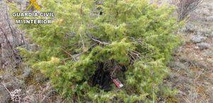 Detenidos dos cazadores furtivos que intentaron atropellar a dos guardas en un coto de Torremocha del Campo