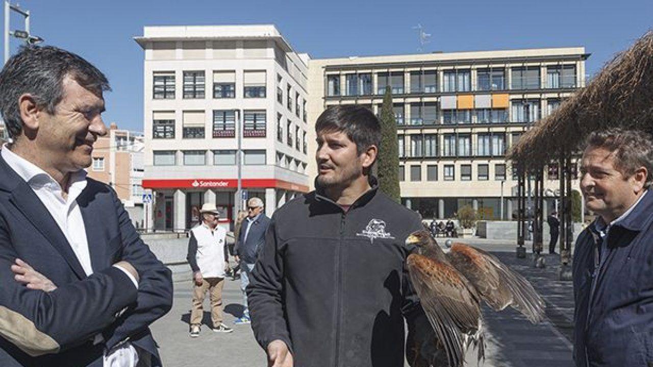 El Ayuntamiento de Guadalajara continúa con el plan de control de proliferación de aves en la ciudad para reducir sus molestias