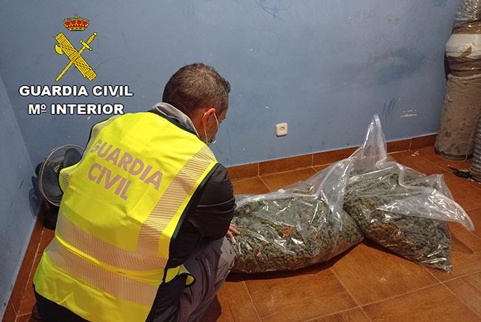 La Guardia Civil detiene en El Casar a 14 personas relacionadas con delitos de robo con violencia e intimidación, tenencia ilícita de armas y cultivo de marihuana
