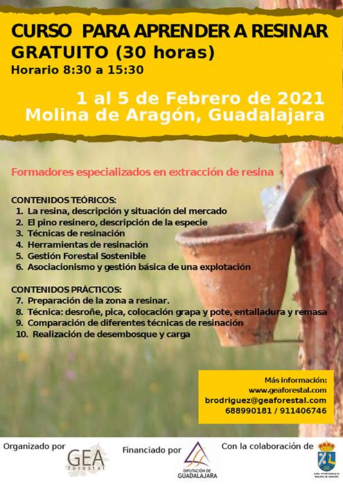 Molina de Aragón acogerá del 1 al 5 de febrero un curso de resineros financiado por la Diputación de Guadalajara