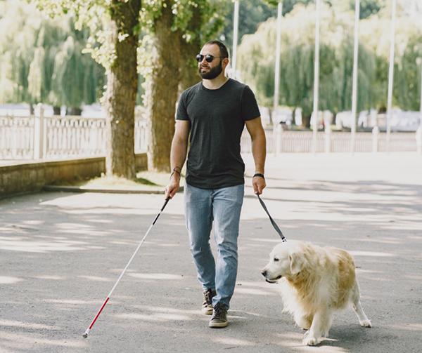 El Gobierno regional inicia la consulta pública del decreto que desarrolla la Ley de acceso al entorno de las personas con discapacidad acompañadas de perros