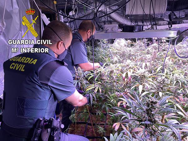Guardia Civil marihuana