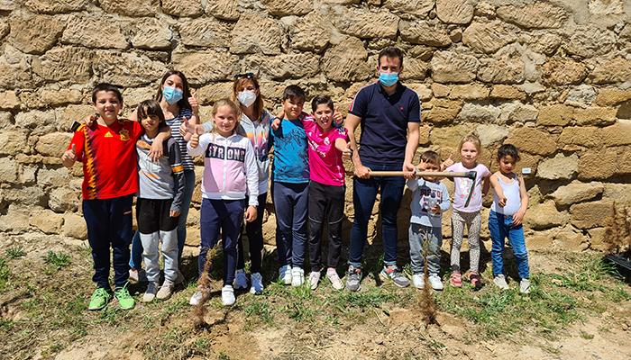 Los niños y niñas del colegio de Alcocer plantan 30 pinos para la campaña 'Un árbol por Europa'