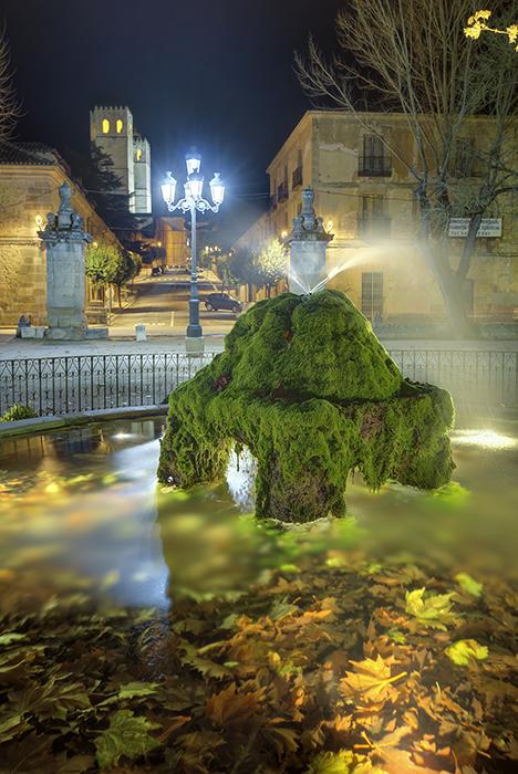 Las obras en el Parque de La Alameda de Sigüenza comenzarán en los próximos meses