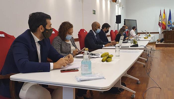 El PP del Ayuntamiento de Guadalajara muestra su solidaridad con La Palma y anima a comprar plátanos de Canarias